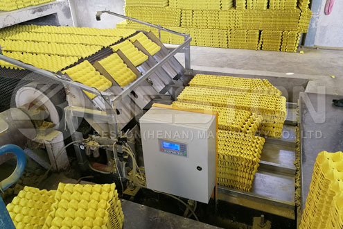 Packing Egg Trays Automatically